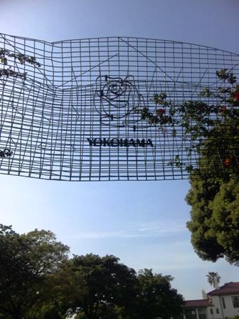 港の見える丘公園のバラ1