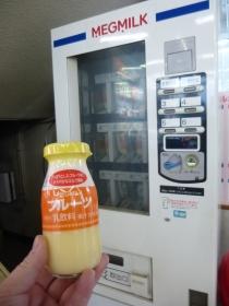 P100030028.jpg