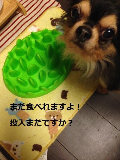 4_20131127185504ec5.jpg