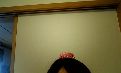 DVC00175_20110710093431.jpg