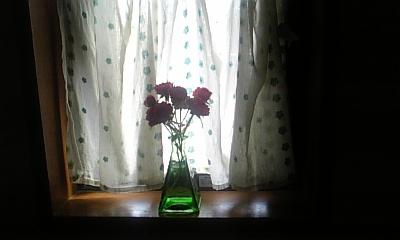 DVC00337_20110526151348.jpg