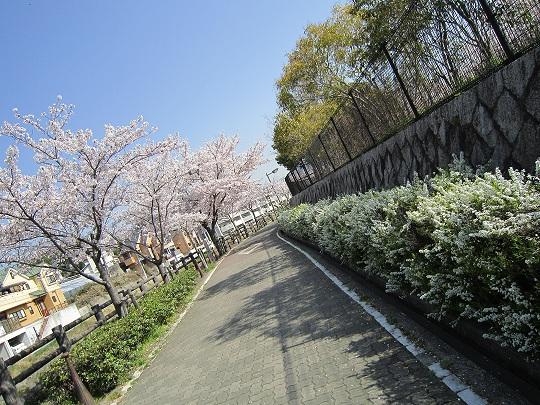 IMG_0054.jpg