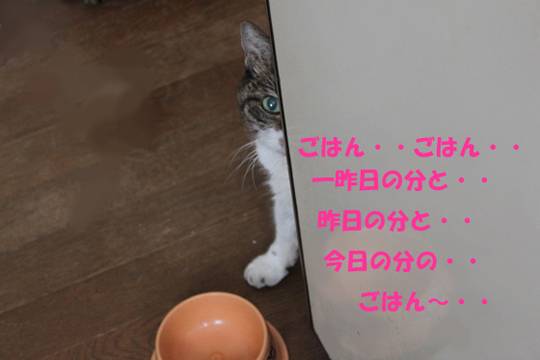 btymkso2.jpg