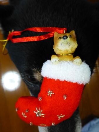 クリスマス帽子6
