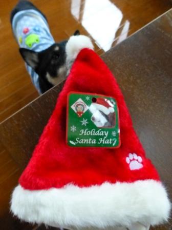 クリスマス帽子12