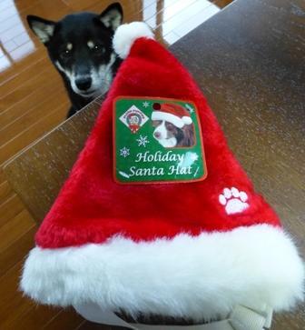 クリスマス帽子13
