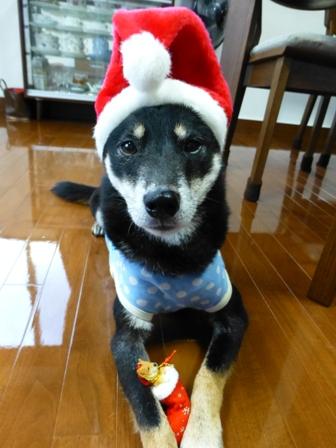 クリスマス帽子18