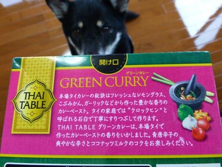 グリーンカレー2