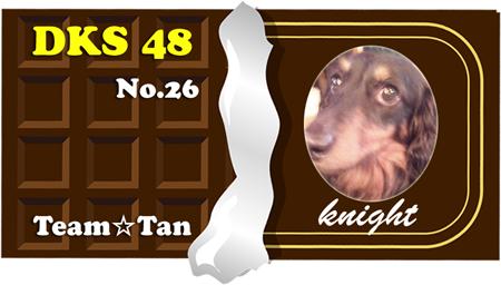 26 knight