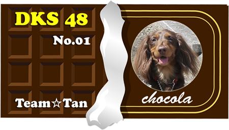 chocola.png