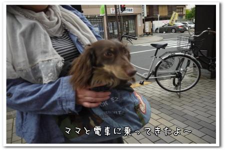 me8dx.jpg