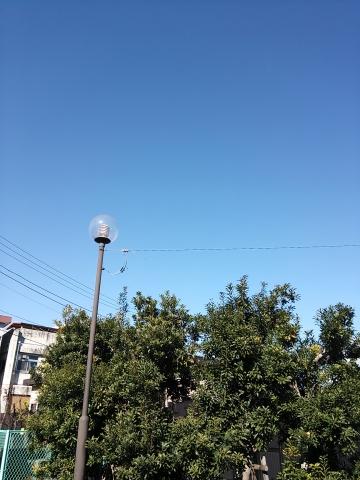 20141213113504d3b.jpg