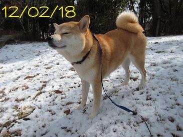 120218 1