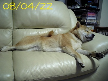 080422 1