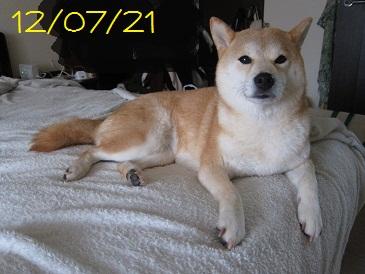 120721 1
