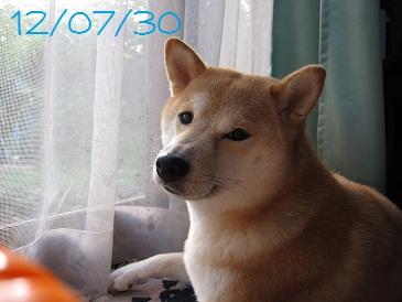 120730 1