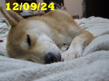 120924 1