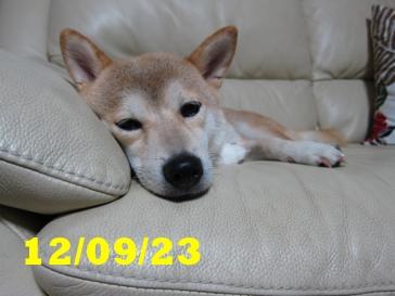 120923 1