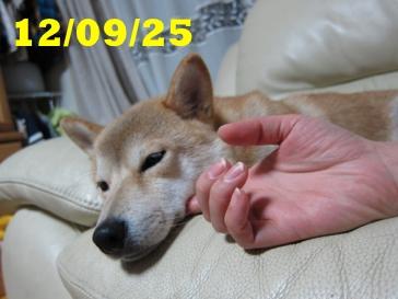 120925 1