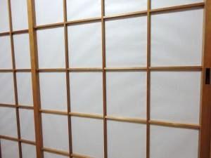 DSC00439_convert_20101231210207.jpg