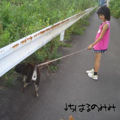20120707b1.jpg