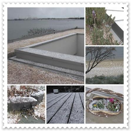 雪降ってます!!