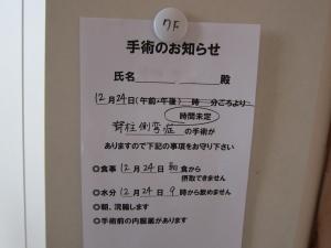 IMG_2593 (2)
