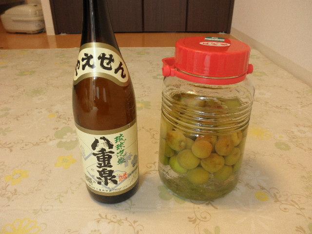 梅酒20110609