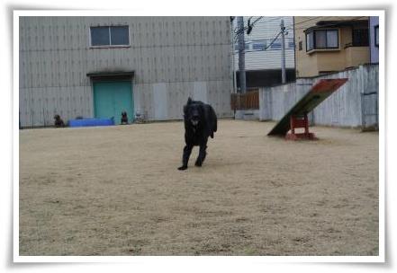 jyuryoku1.jpg