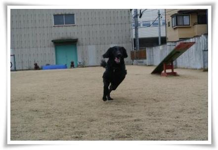 jyuryoku2.jpg