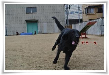 jyuryoku3.jpg