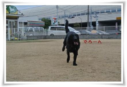 jyuryoku5.jpg