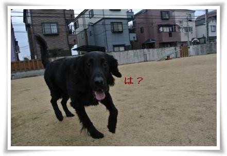 jyuryoku6.jpg