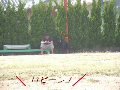 run13.jpg