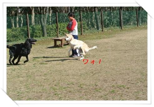 run26.jpg