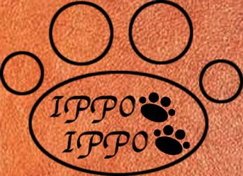 ippo×ippo