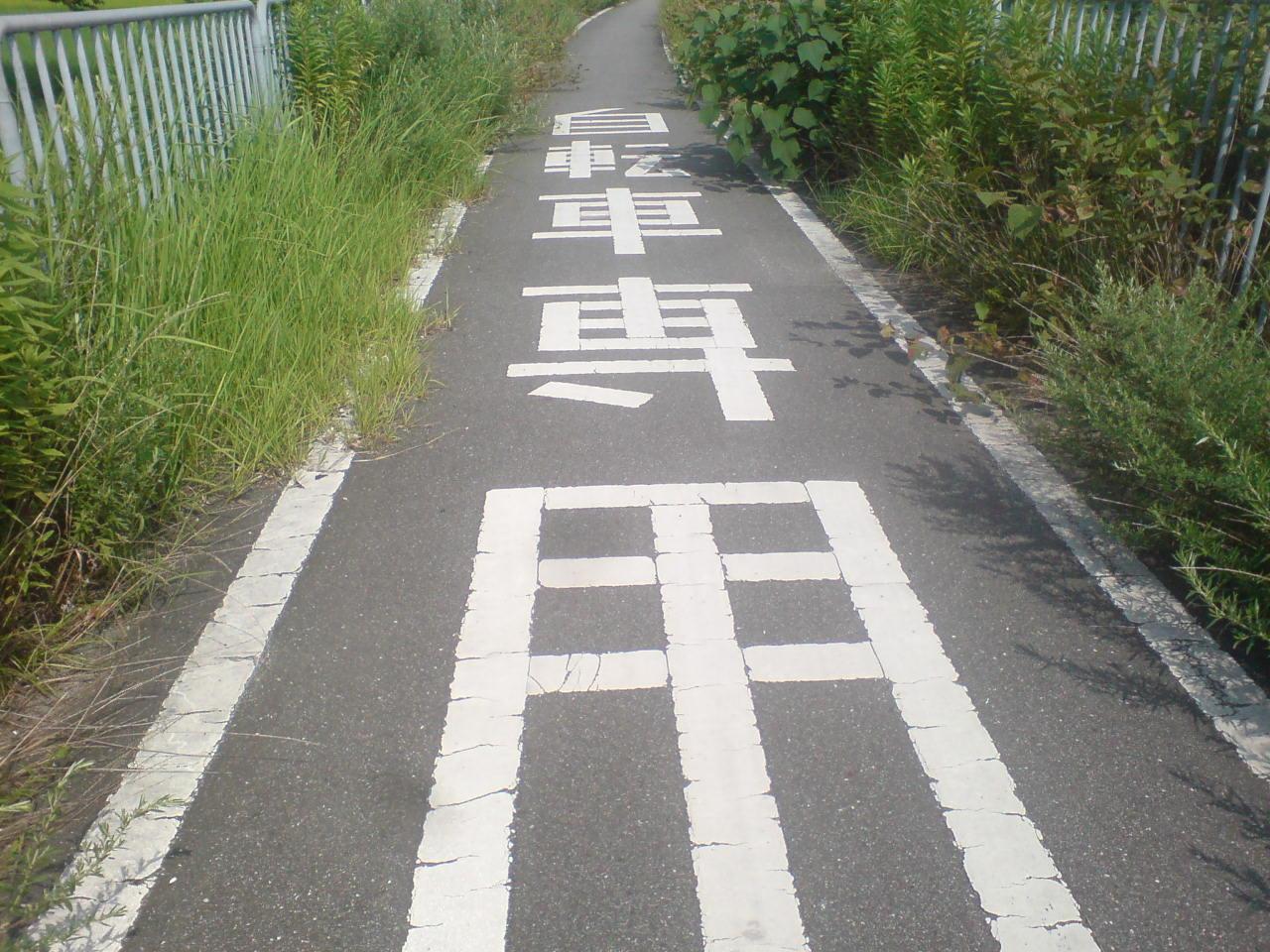 権現ダム6