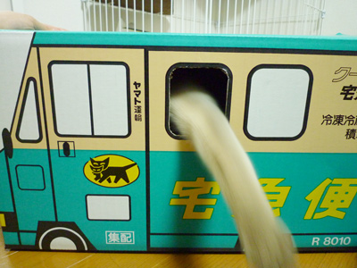 ロキの宅急便7