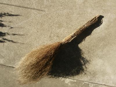 ほうき草でほうきを作る
