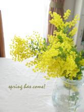 springhascome_20120411094001.jpg