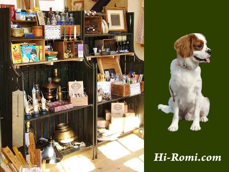 Hi-Romi.com(ハイロミドットコム)第10回ロハスフェスタ出店決定!