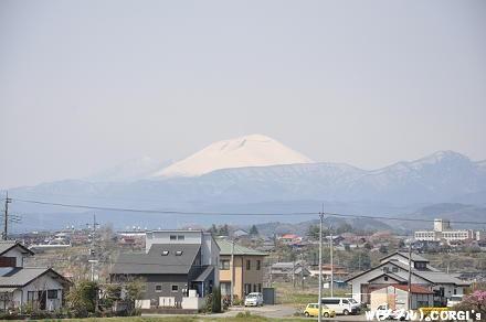 2010041809.jpg