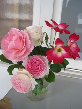 20100527花びん