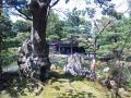 清水園茶室