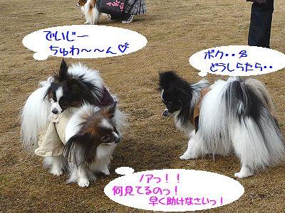 blog227P1040231.jpg