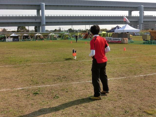 20141123 samukawa (3)