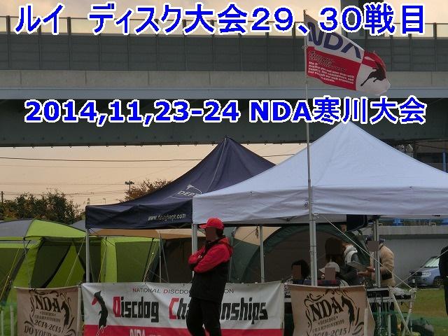 CIMG6715.jpg