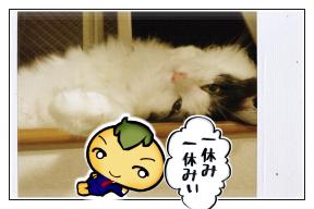 hitoyasumi.png