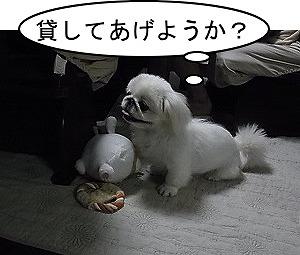 おもちゃいる?
