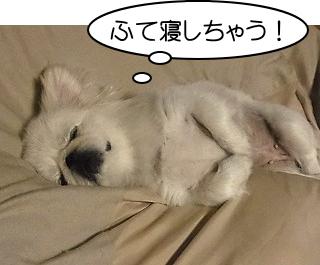 ふて寝しちゃう